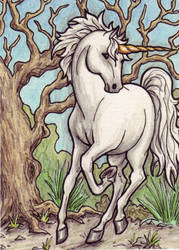 Unicorn and the Old Tree by EquusTenebriss