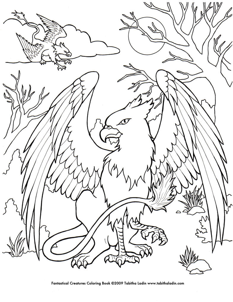 Displaying 20gt Images For Simple Gryphon Drawings