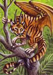 Draconus Tigris ATC
