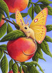 Peaches and Cream by EquusTenebriss