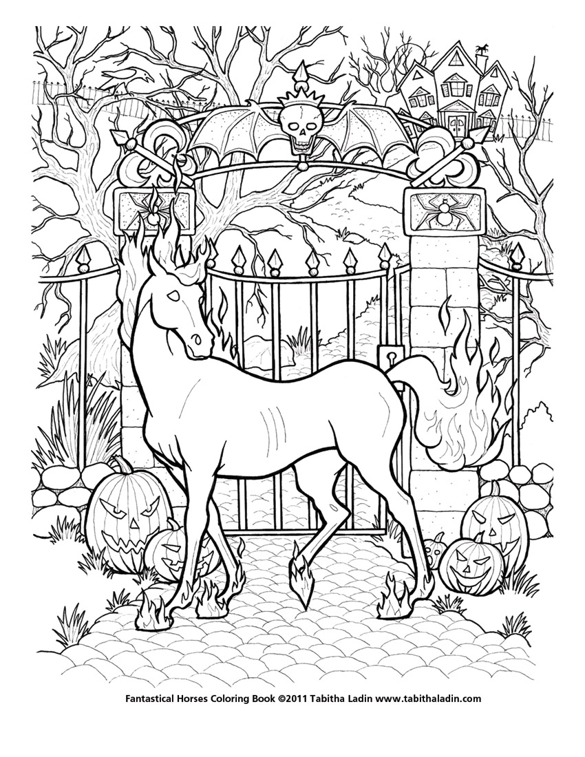 fantastical horses coloring book on horse and unicorn coloring book