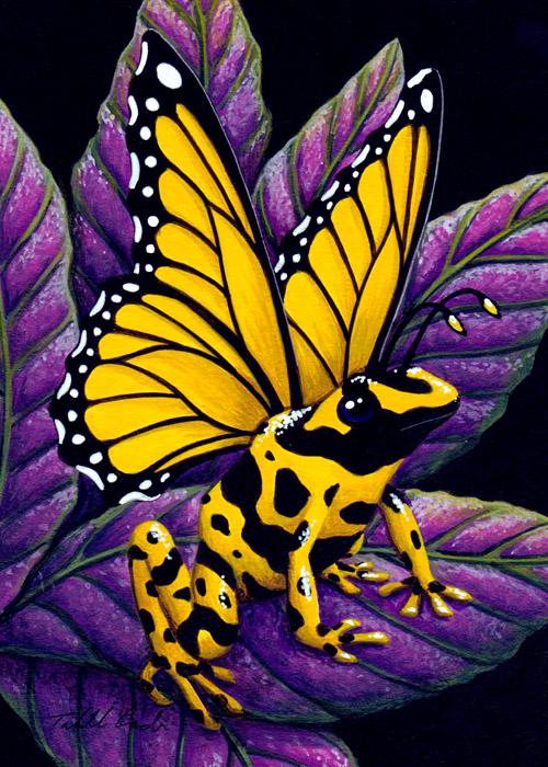 Yellow Poison Fairy Frog by TabLynn