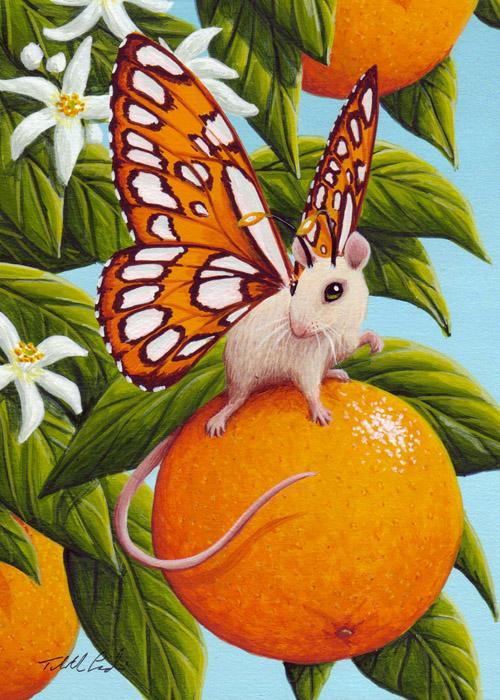 Orange Blossom by TabLynn