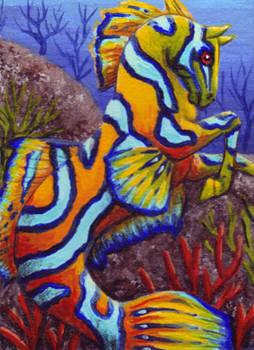 Mandarin Hippocampus ATC