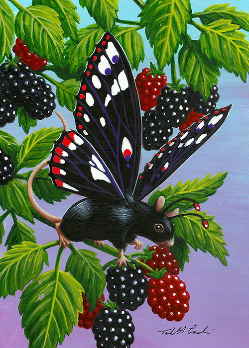 Blackberry Bounce by TabLynn