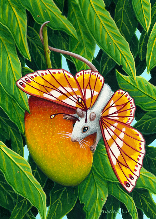 Mango Tango by TabLynn