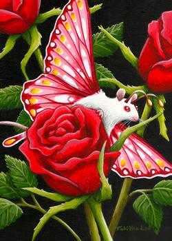 Romeo Rose