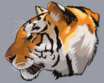 Tiger Head by DQuaro