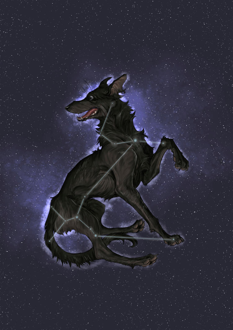 Padfoot by Popuche
