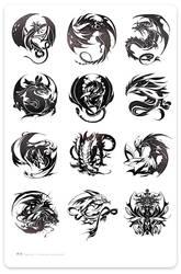 Dragon Raja by blazewu