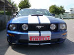Mustang Blue and White