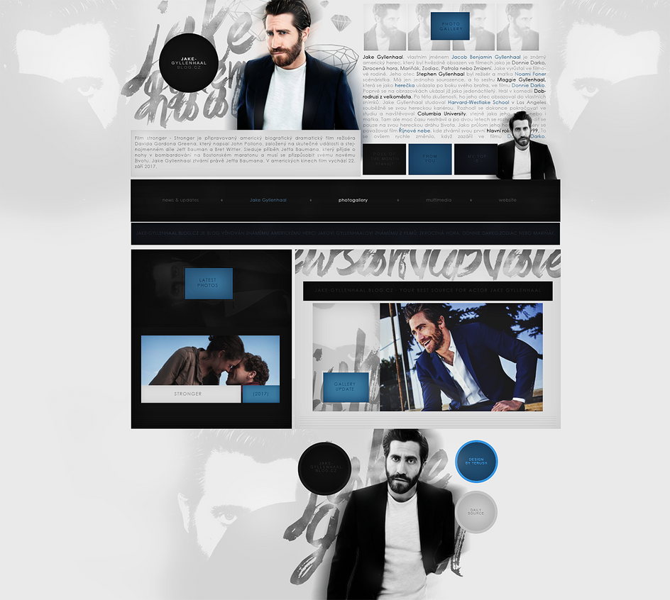 Ordered design (Jake-gyllenhaal) by terushdesigns