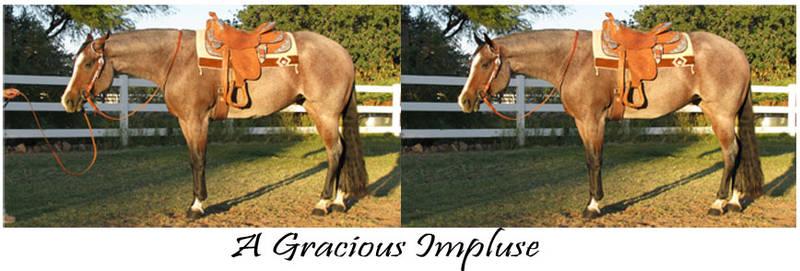A Gracious Impulse