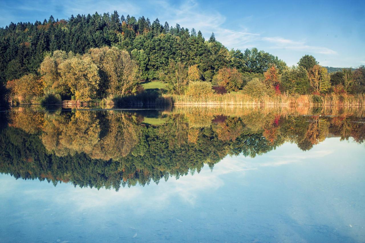 autumn feelings by Mark-Heather