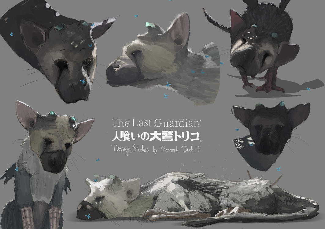 Last Guardian Sketches by przemek-duda