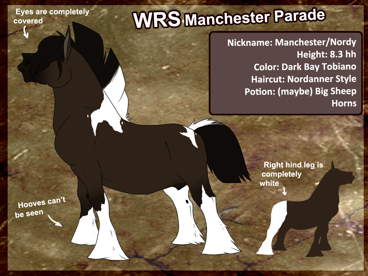 WRS Manchester Parade by thatdumbhorse