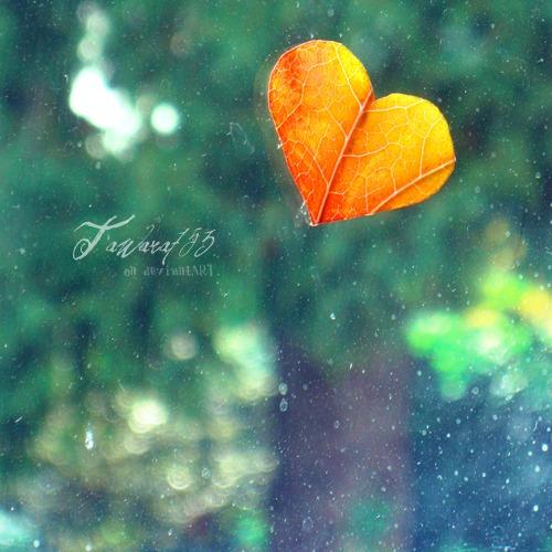 I love a u t u m n by GiuliaDepoliART