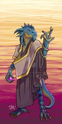 Commission - Dragonborn Sorcerer