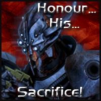 marauder_shields___honour_his_sacrifice__by_ryanhawkz-d4tcept.jpg