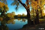 Autumn Delight 0122 by CrystalAnnPhotos