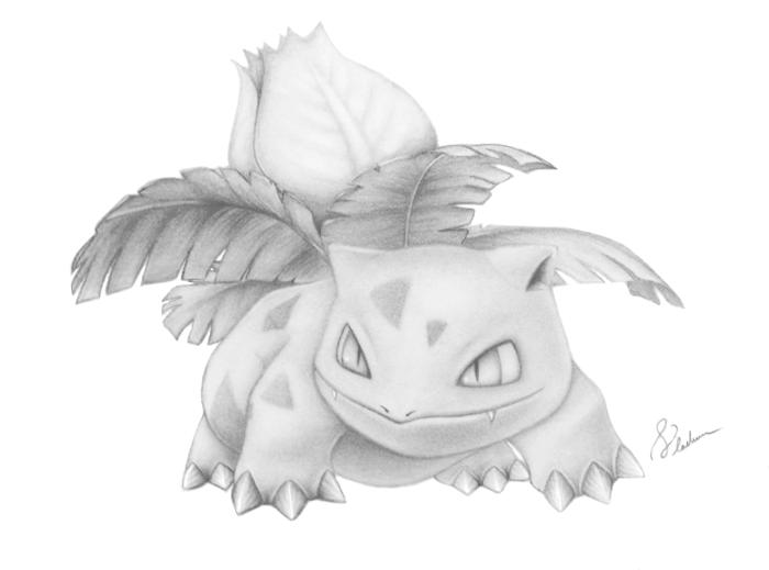 Detailed (pokemon) Pencil Drawings (Entei and Ivysaur ...