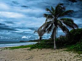 Martinique N'4 Sainte-Anne