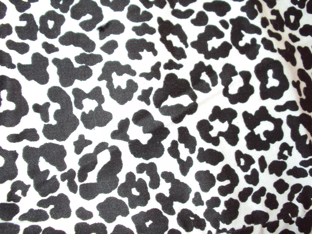 leopard texture 1 by ghoulskout