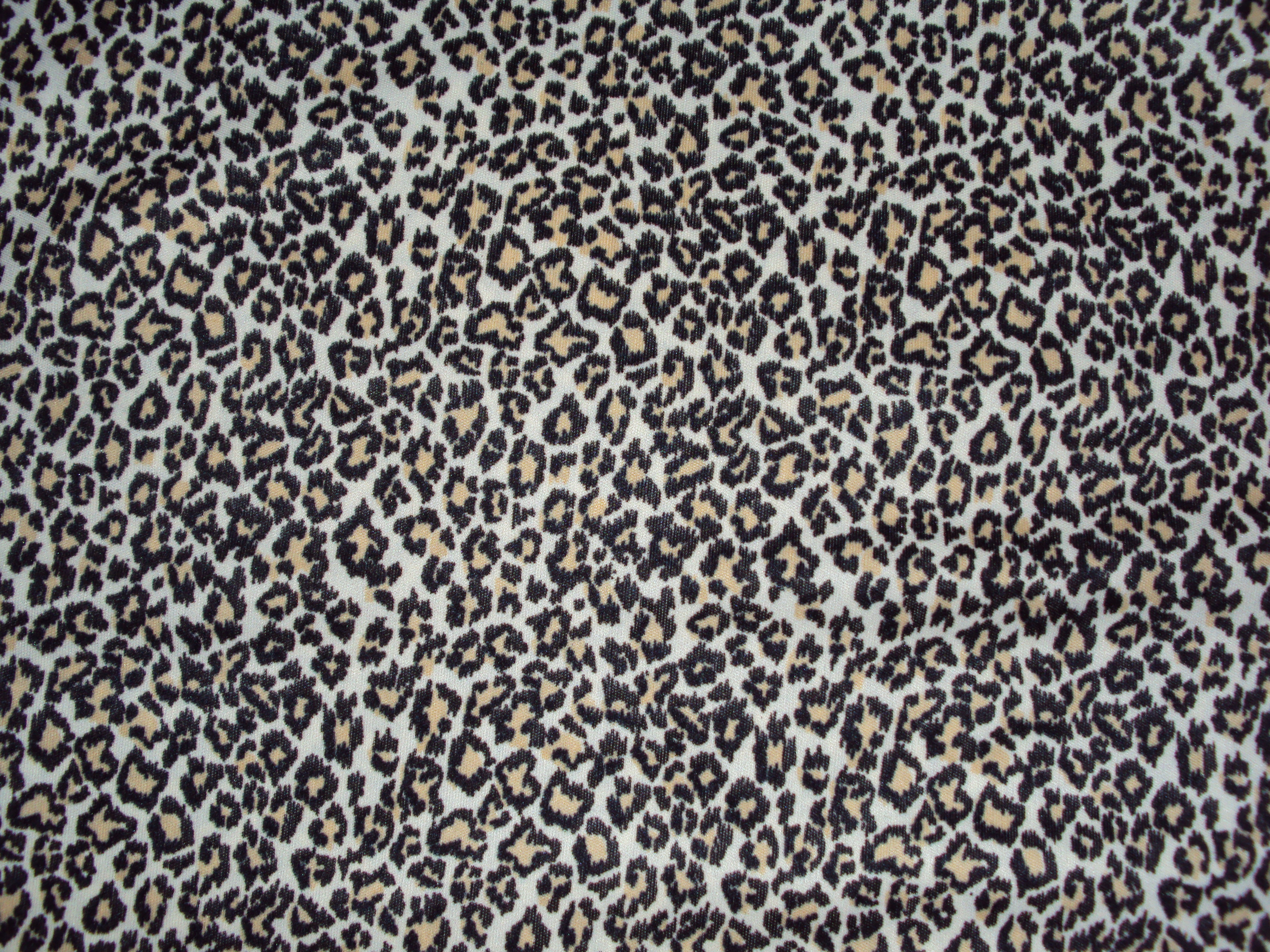 another leopard texture by ghoulskout on DeviantArt