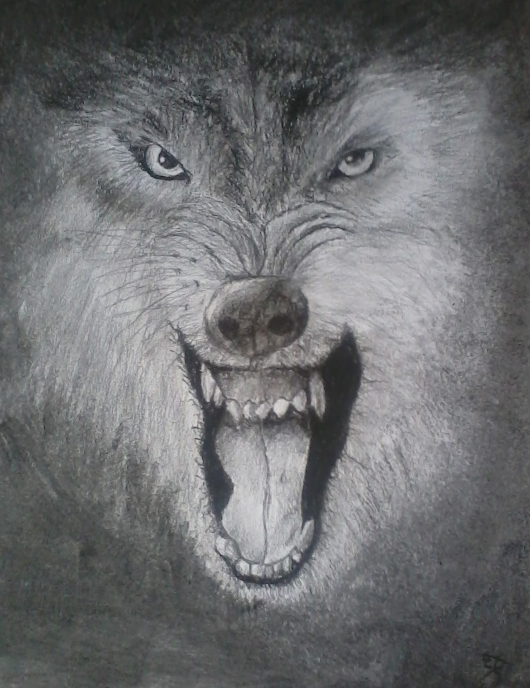 Angry wolf by Pieceofrope on DeviantArt