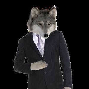 DireWolfMedia's Profile Picture