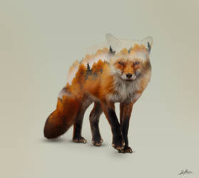Foxy by redtreeme