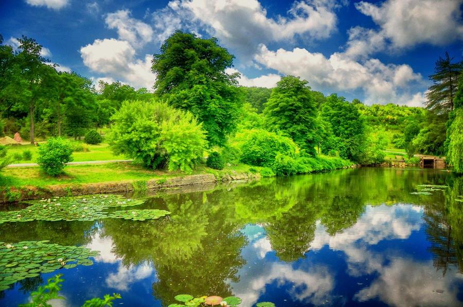 ataturk arboretum by monariza on deviantART