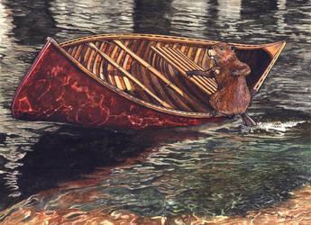 Fowler the Beaver Paddling by dwaynerjames