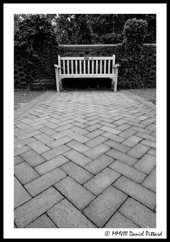 Have a Seat by dspittard