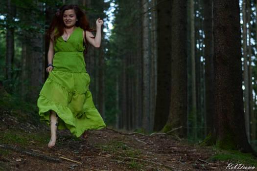 spring thru the forest