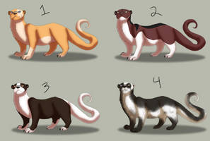 St Madai's Otter ADOPTABLES: 4/4 AVAILABLE