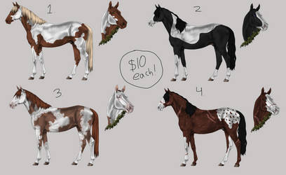 Horse Adopts [4/4 Available]