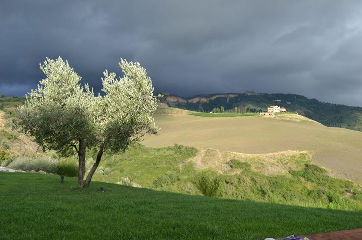 Surreal View in Tuscany by ShidatheUmbreon
