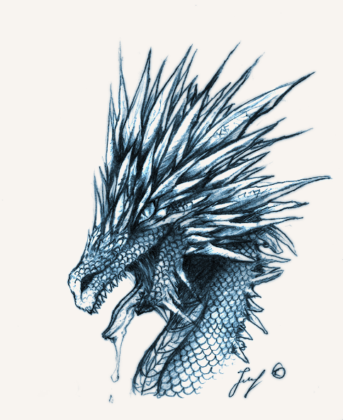 Ice Dragon Drawing Aurora Ice Dragon484 x 593