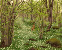 Hazelwood hare