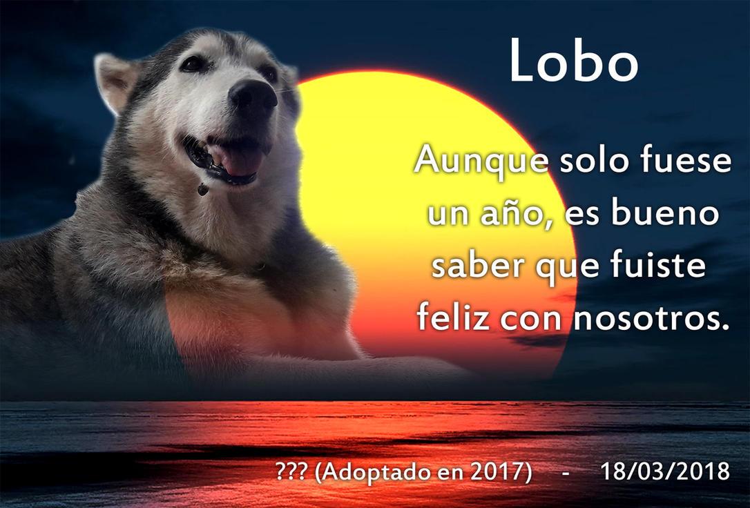 Rest in peace dummy but loyal doggo by SymbolHero
