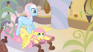 Flutterspa Day