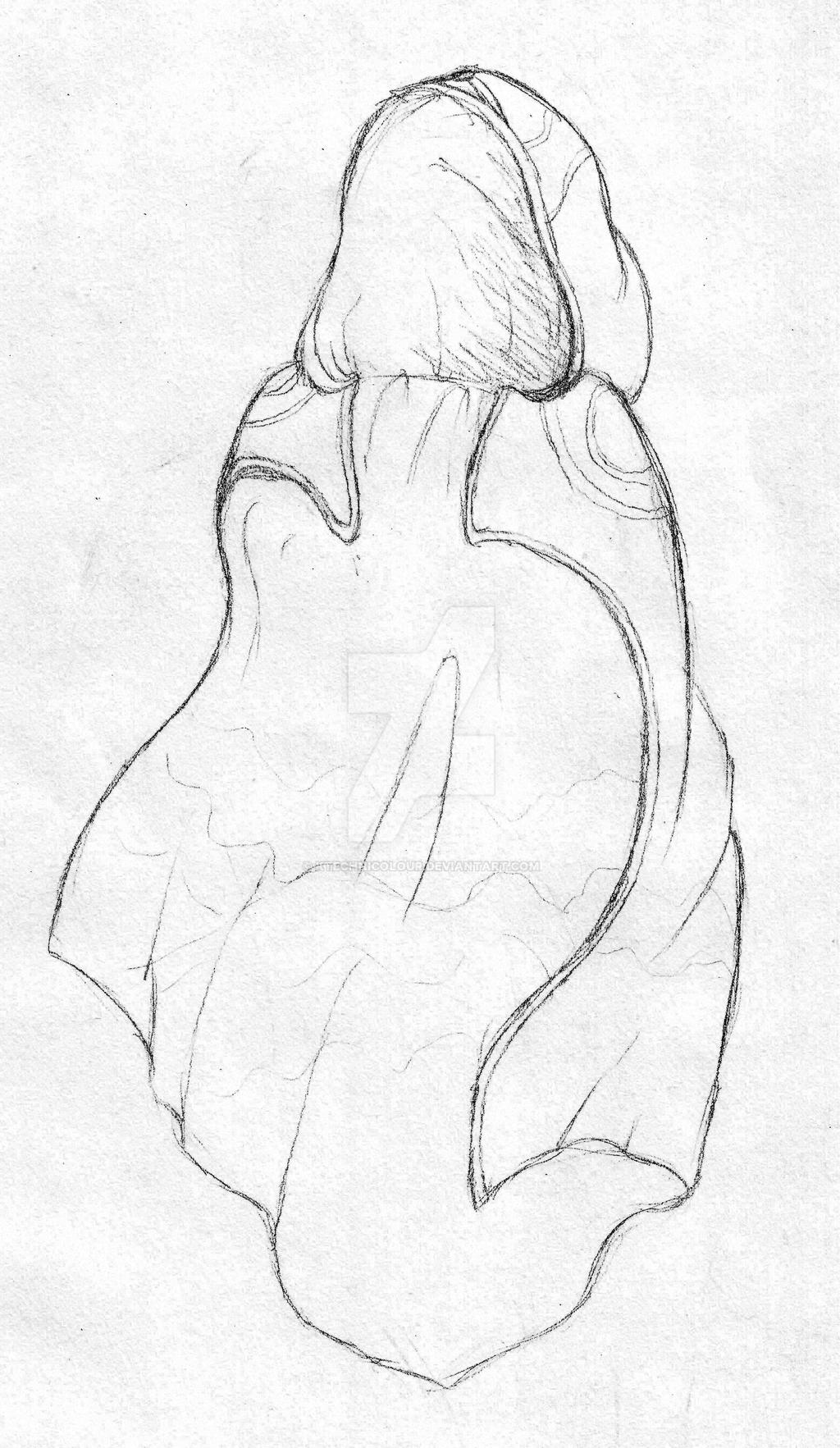 Cloak by KTechnicolour