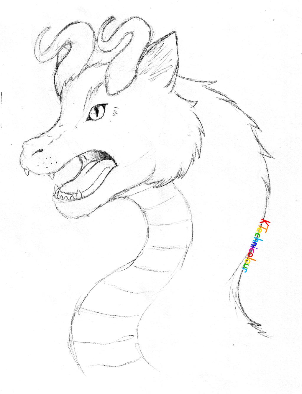 Cat Dragon by KTechnicolour
