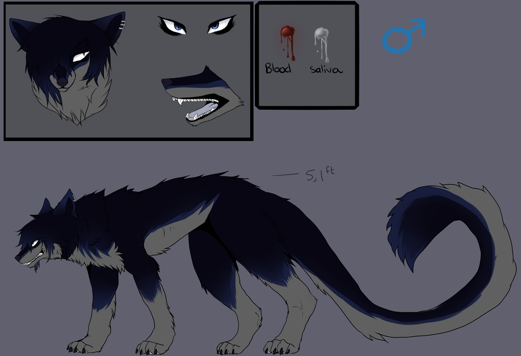Axel Canine Reference by Feonnix
