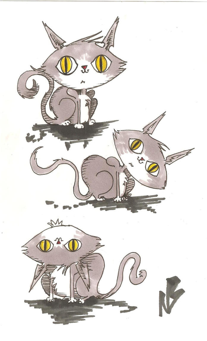 Cats by natekillswithskillz