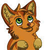 Warriors icon: Kitten Rusty by Winggal