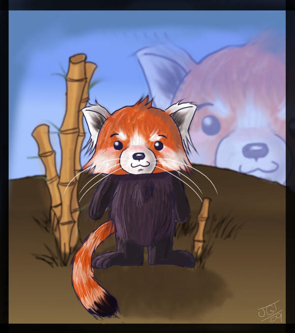 Chibi red panda - photo#14