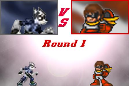 SSBB: OC series Round 1 by Proto165