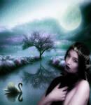 Elvish Enchantress